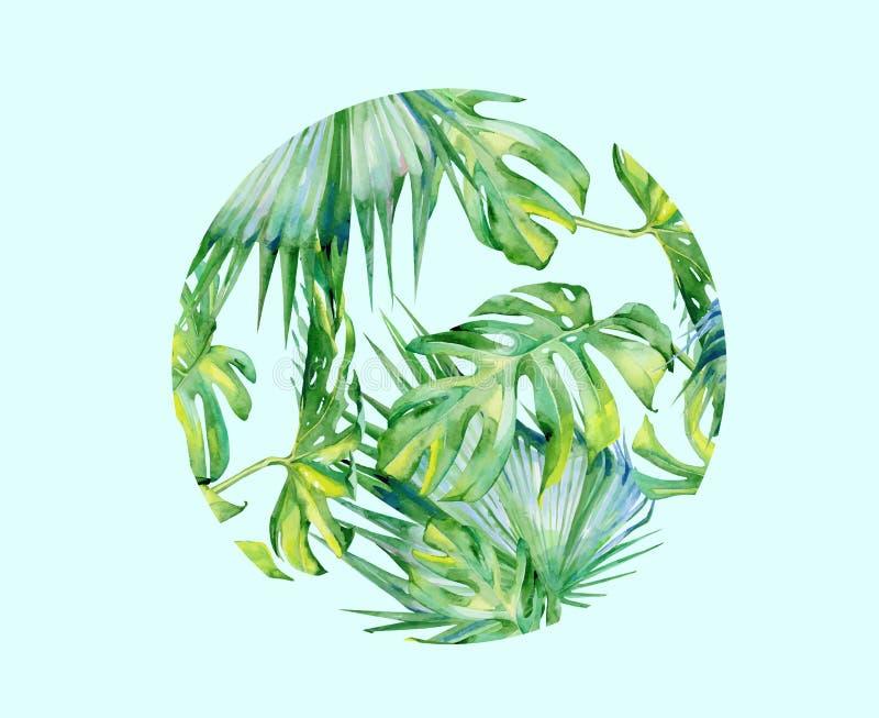 Deocration isolato della foglia della pianta verde dell'acquerello di vettore royalty illustrazione gratis