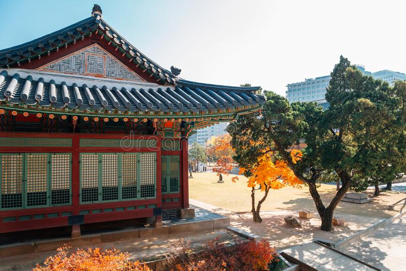 Deoksugungs-Palast mit Ahorn in Seoul, Korea stockfotos