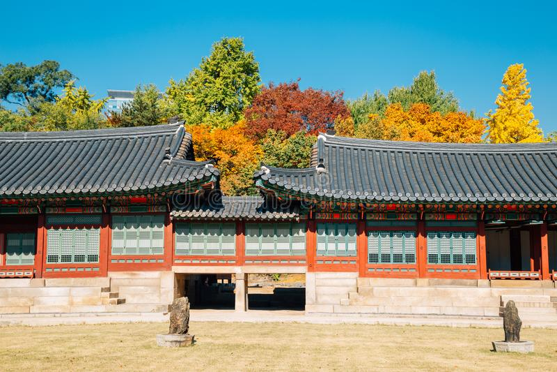 Deoksugungs-Palast mit Ahorn in Seoul, Korea lizenzfreie stockfotos