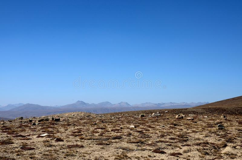 Dry burnt grass and shrubs in Deosai Plains landscape Skardu Pakistan. Deosai Plains, Skardu, Pakistan - October 2, 2016: Dry and semi-burnt grass in the Deosai stock images