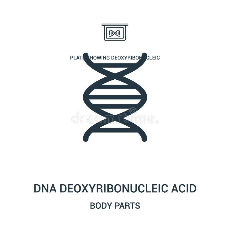 deoxyribonucleic syrlig symbolsvektor för dna från kroppsdelsamling Tunn linje för översiktssymbol för dna deoxyribonucleic syrli vektor illustrationer