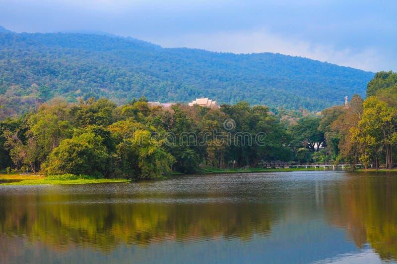 Depósito adyacente a bosques y a montañas imagen de archivo libre de regalías