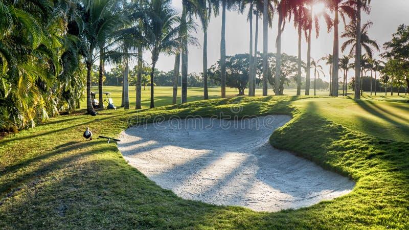 Depósito da areia do campo de golfe fotos de stock royalty free