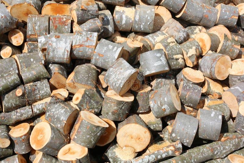 Depósito de lenha de logs de madeira e de troncos cutted imagens de stock