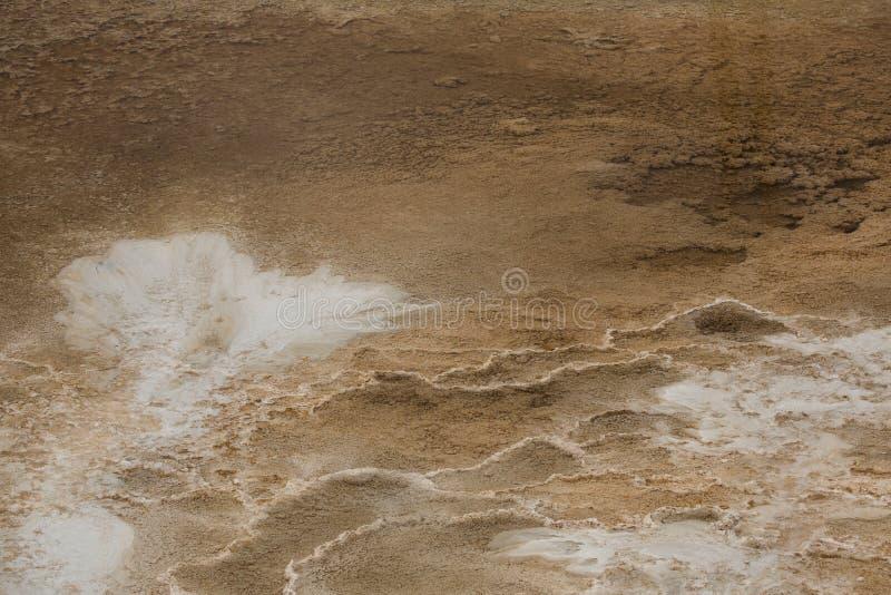 Depósitos brancos do carbonato e associações alaranjadas em Mammoth Hot Springs fotografia de stock royalty free