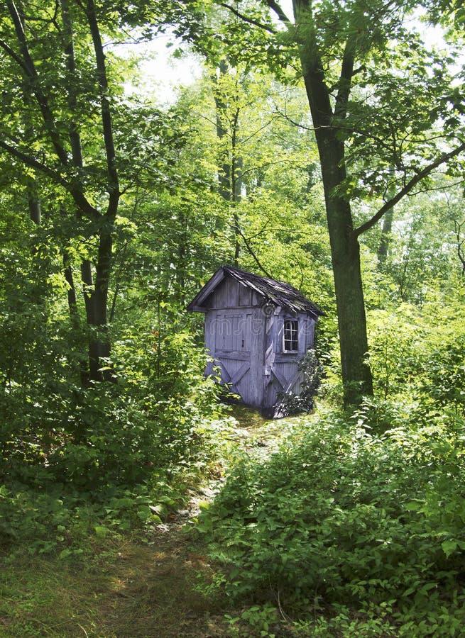 Dependencia en bosque imagen de archivo