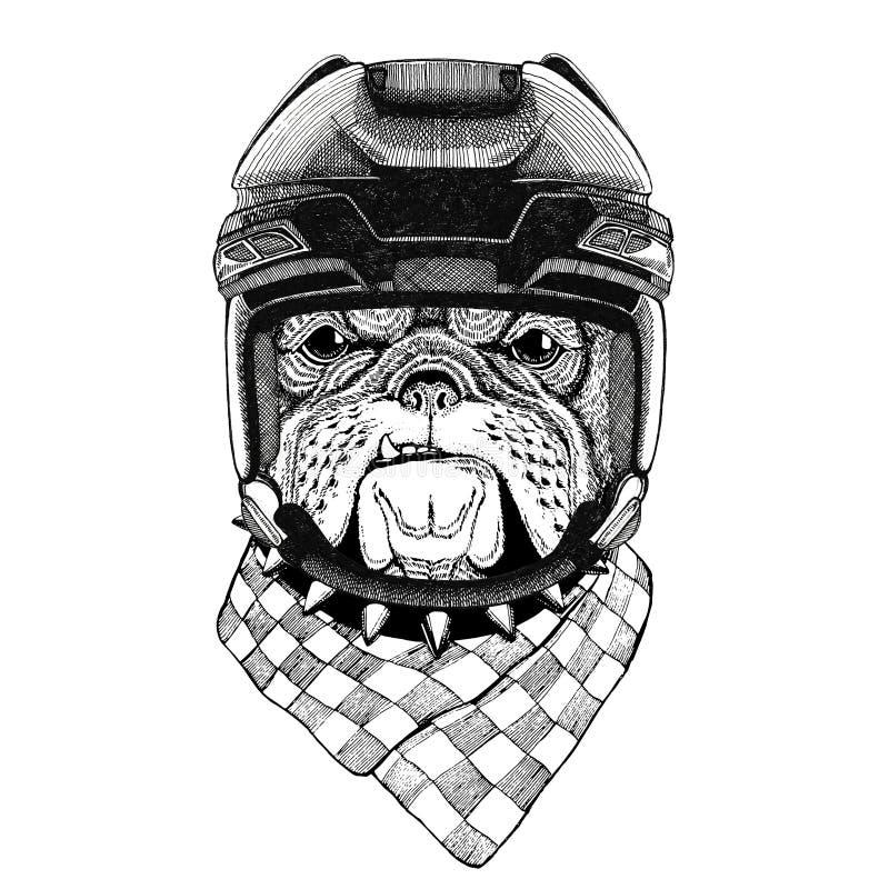 Deporte animal del hockey del deporte de invierno del deporte del casco del hockey del animal salvaje de la imagen del hockey del stock de ilustración