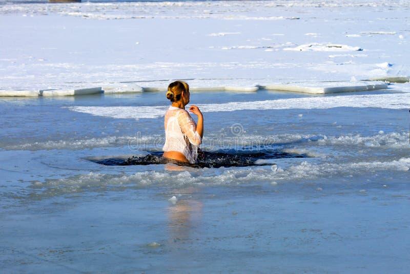 Deporte de invierno Una mujer nada en el río del invierno cubierto con hielo durante el día de fiesta de la epifanía hardening fotografía de archivo libre de regalías