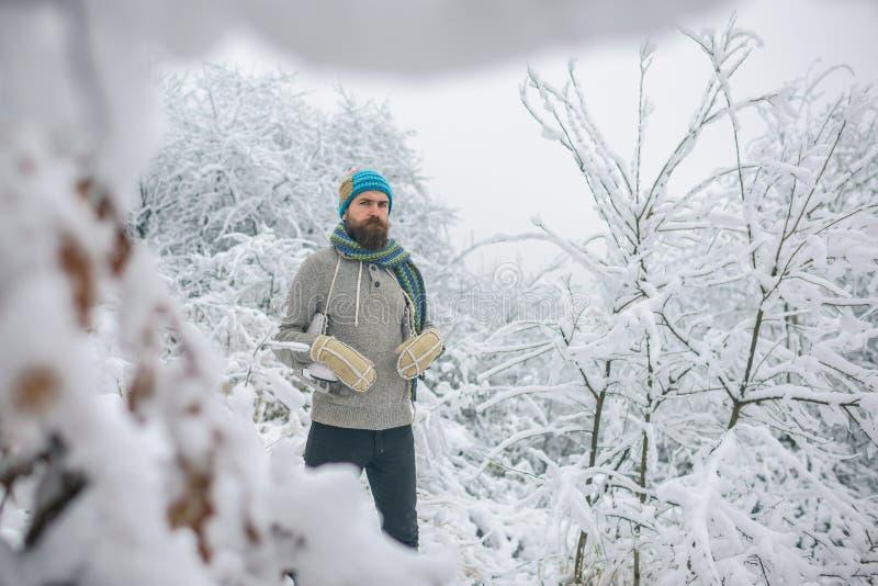 Deporte de invierno y resto, la Navidad imagenes de archivo