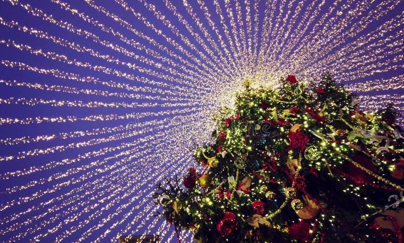 Deporterad julgran klädd gnistor med belysning royaltyfri foto