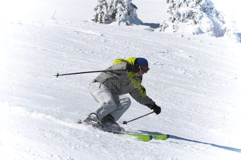Deportes del esquí del invierno. Esquiador cuesta abajo imágenes de archivo libres de regalías