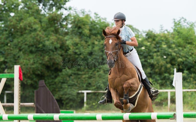 Deportes ecuestres, caballo que salta, salto de la demostración fotos de archivo libres de regalías