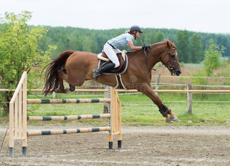 Deportes ecuestres, caballo que salta, salto de la demostración imagen de archivo libre de regalías