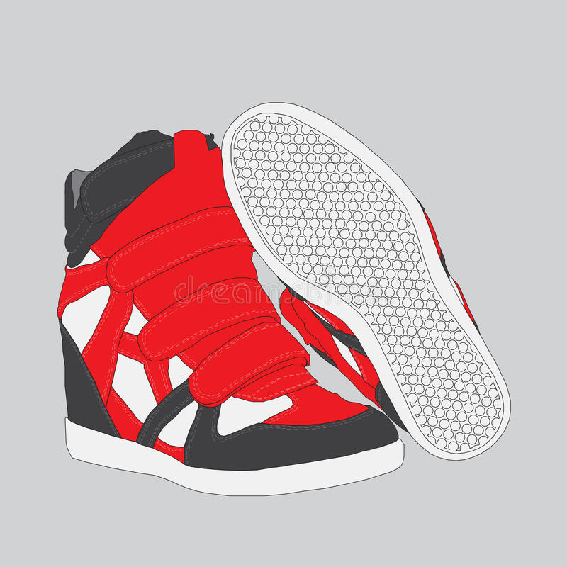 Deportes femeninos de las zapatillas de deporte en un vector imagen de archivo