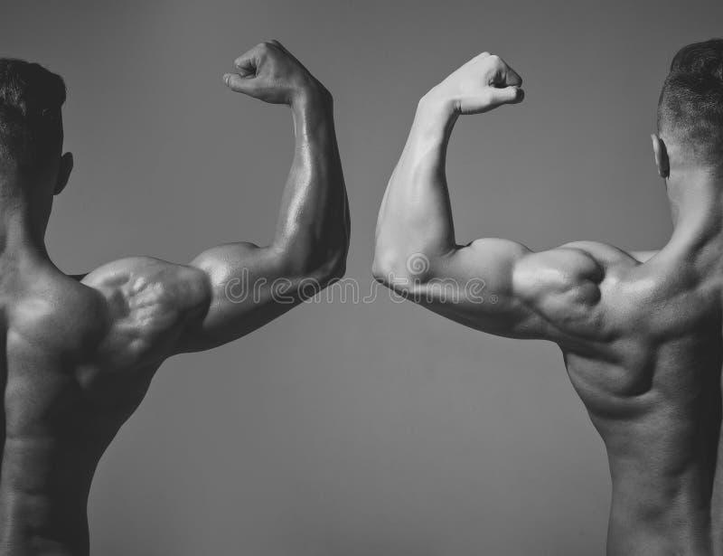 Deportista del coche que muestra el bíceps y el tríceps foto de archivo