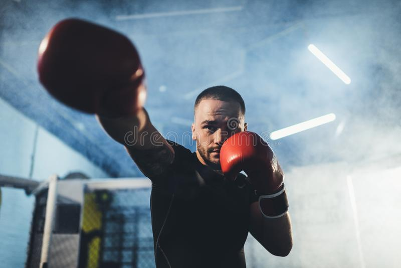 Deportista muscular en guantes de boxeo imagenes de archivo