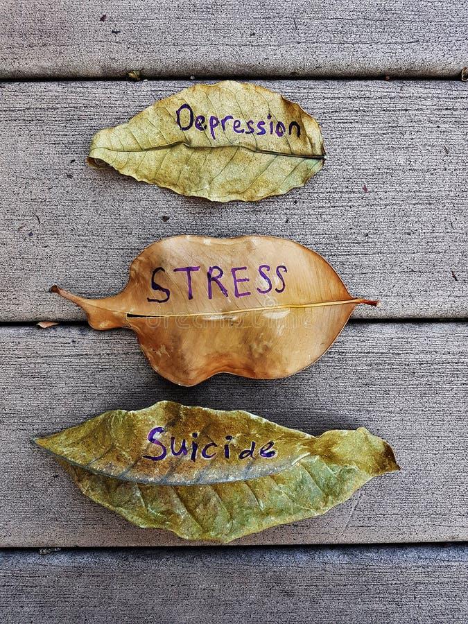 Depresión, tensión, suicidio escrito en las hojas imágenes de archivo libres de regalías