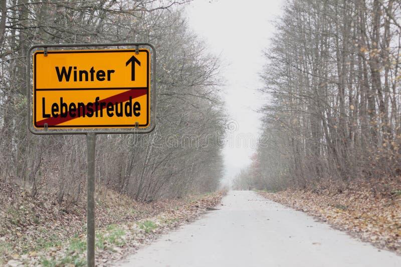 Depresiones del invierno fotografía de archivo
