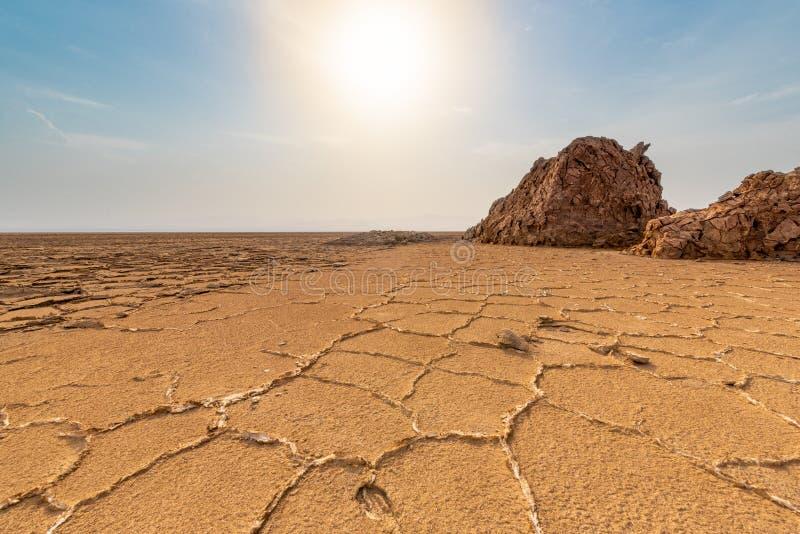 Depressão de Danakil, Etiópia, burro Ale Lake imagens de stock royalty free
