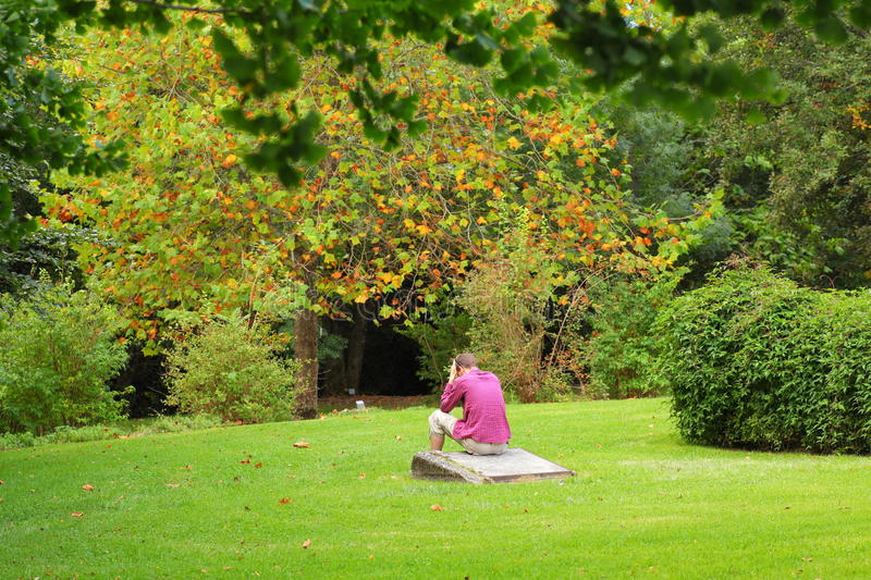 Download Young Man Sitting In Park At Fall Stock Photo - Image of lonely, moment: 30328838