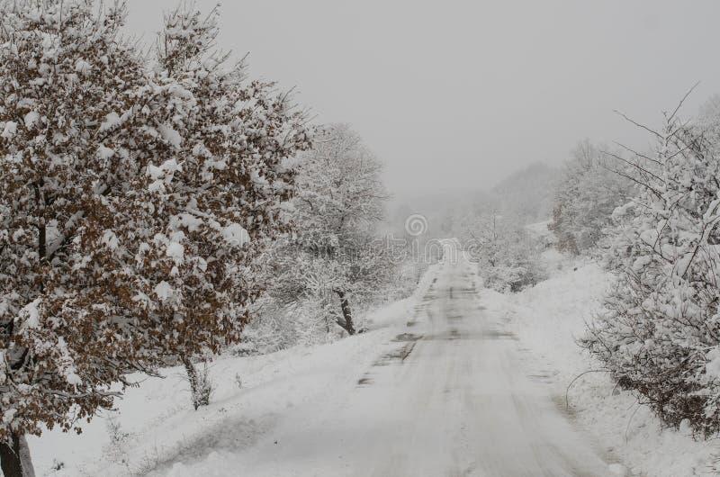 Depressione del percorso di Snowy il legno fotografia stock