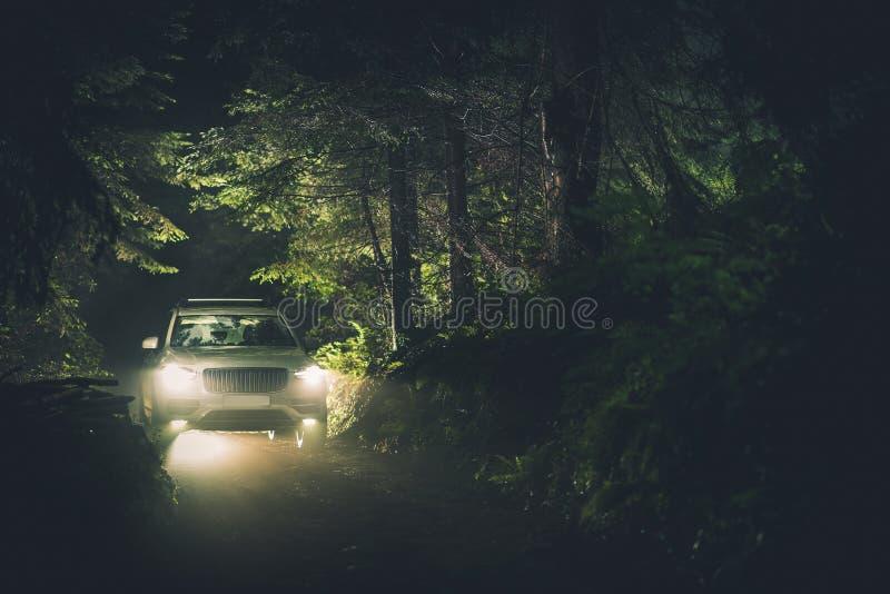 Depressione dell'azionamento di notte la foresta fotografia stock