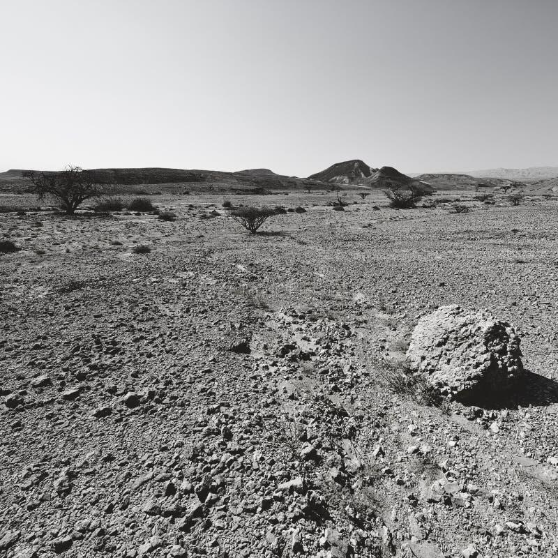 Depressione e vuoto in bianco e nero fotografie stock libere da diritti