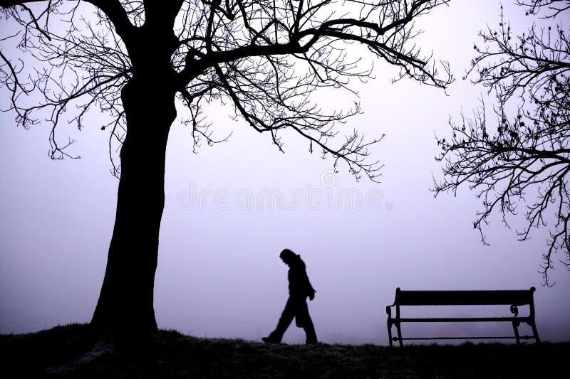 Deprimente in nebbia fotografie stock libere da diritti