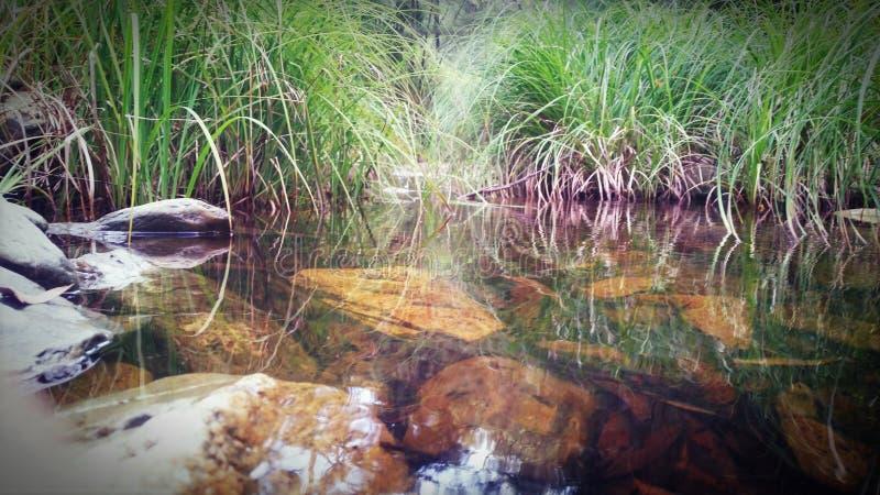 Deptford Gold Creek stock photography