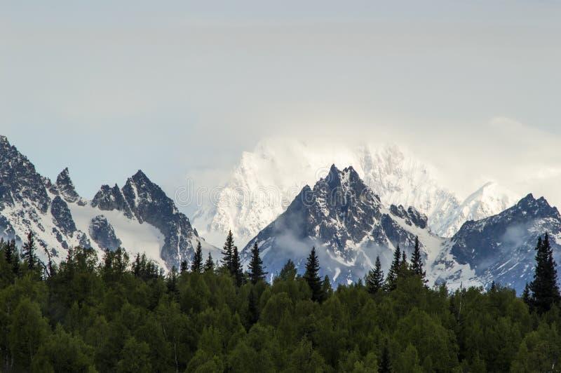 Der alaskische Gebirgszug an einem vollen Tag stockbild