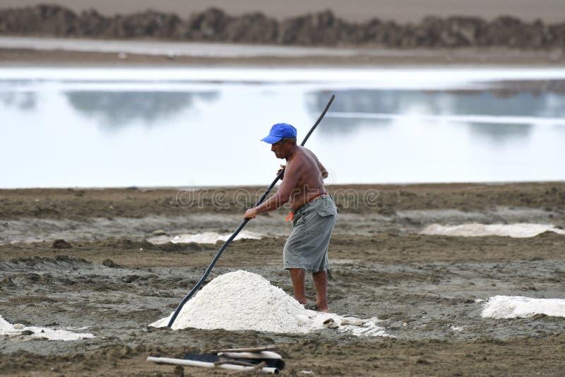 Der alte Mann, der Salz vom Meerwasser erntet, staut in Panama stockfotografie