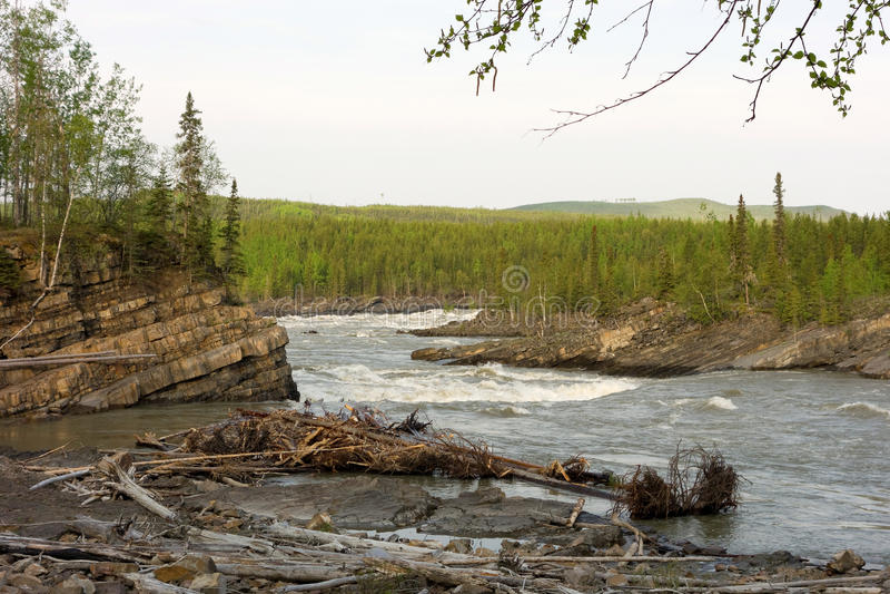 Der Anfang einer Kaskade an Yellowstone-Park stockfoto