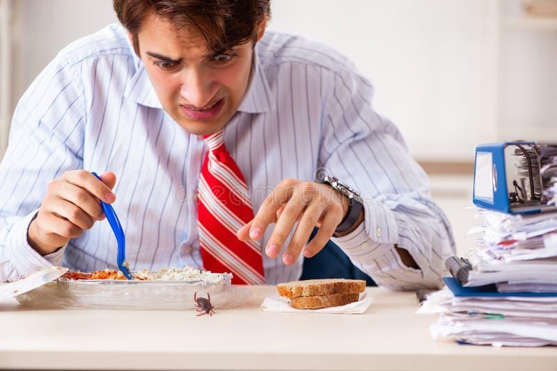 Der Angestellte, der Nahrung mit den Schaben herum kriechen isst stockfoto