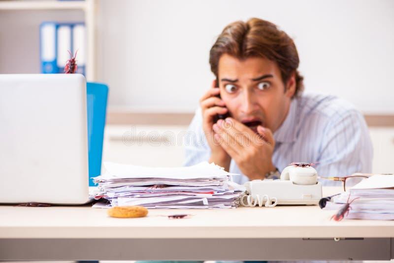 Der Angestellte, der Nahrung mit den Schaben herum kriechen isst lizenzfreies stockbild