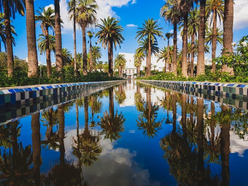 Der arabische Liga-Park u. das x28; Arabe Parc de la Ligue u. x29; ist ein städtischer Park in Casablanca, Marokko lizenzfreie stockbilder