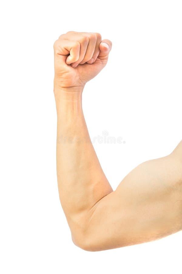 Der Arm des Mannes stark mit dem Muskel auf weißem Hintergrund, Gesundheitswesen Co stockfoto