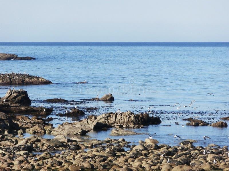 Der Atlantik in der hohen See In Galizien Nordwest-Spanien stockbild