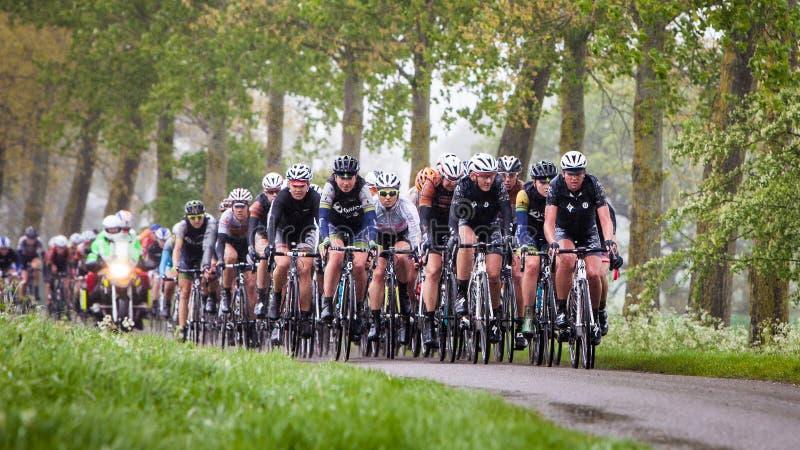 Der Ausflug-Radrennen der Frauen stockfotos