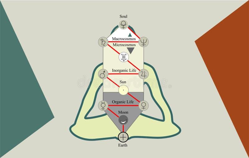 Der Baum des Lebens und des Mannes in Lotus Position stock abbildung