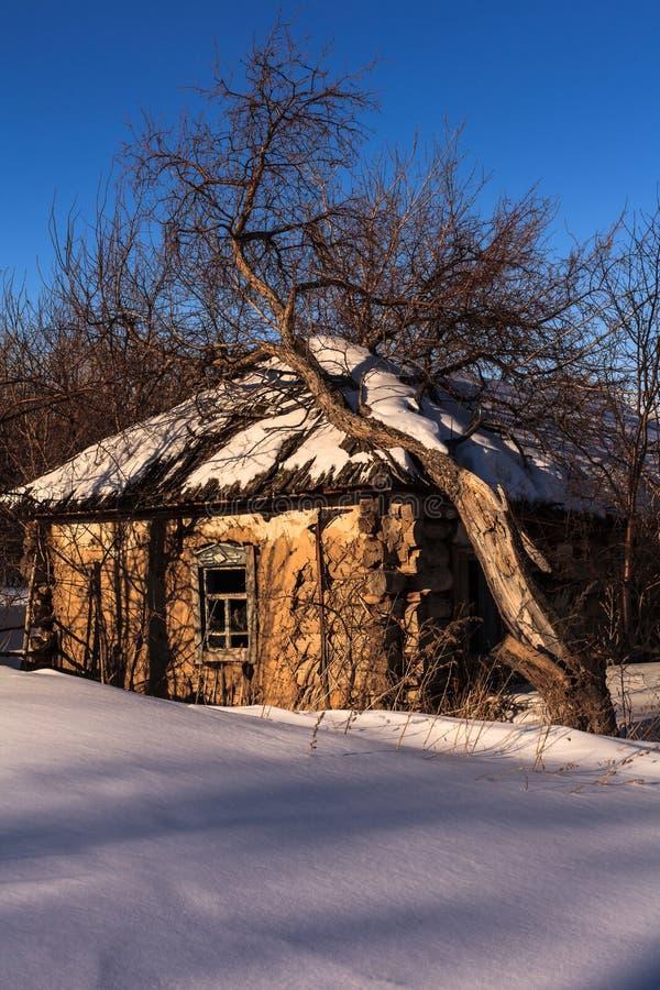 Der Baum fällt auf ein Dach des alten Hauses stockfoto
