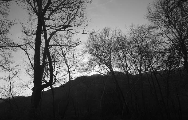Der Berg der Nymphen lizenzfreie stockbilder