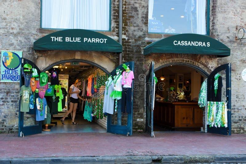 Der blaue Papagei, Savanne, GA stockbilder