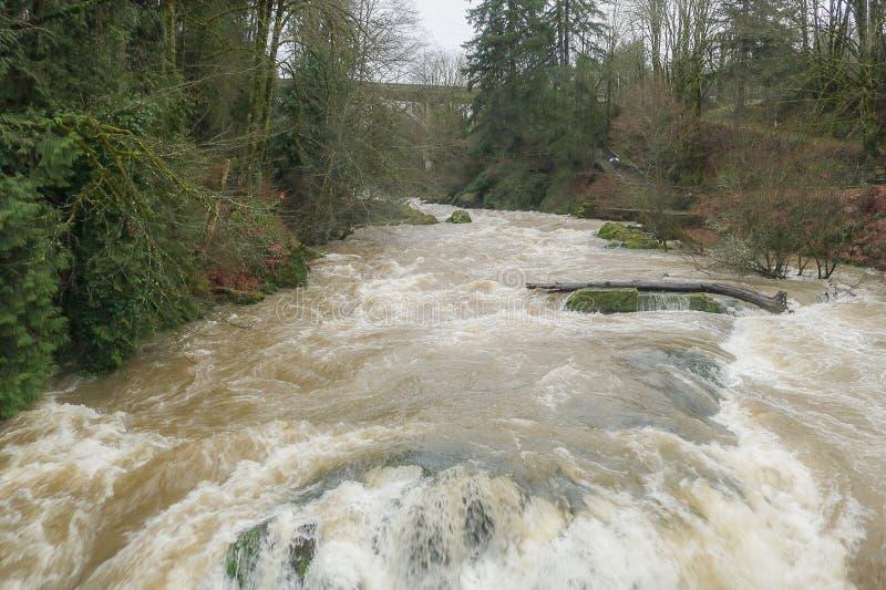 Der Brüllenwasserfall lizenzfreie stockfotografie