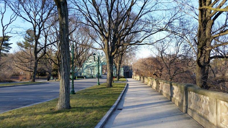 Der Bronx-Zoo-Winter 2015 83 lizenzfreies stockbild