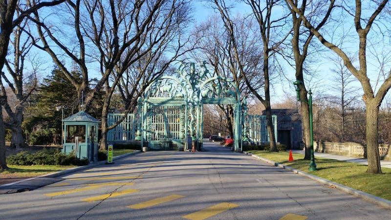 Der Bronx-Zoo-Winter 2015 85 stockfotos