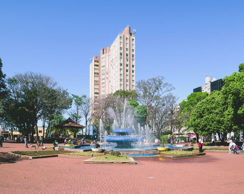 Der Brunnen des Ary Coelho-Quadrats in Campo großem Mitgliedstaat, Brasilien lizenzfreie stockfotos