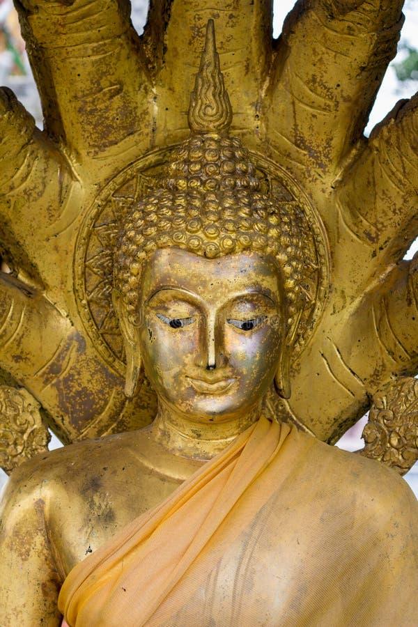 Der Buddha-Kopf im thailändischen Tempel stockfotografie