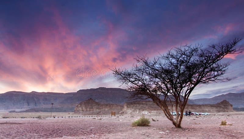 Der Burnning-Himmel stockbilder