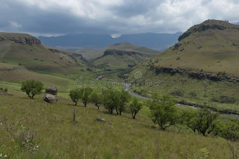 Der Bushmans-Fluss im Giants-Schloss-Kwazulu Natal Naturreservat lizenzfreie stockfotografie