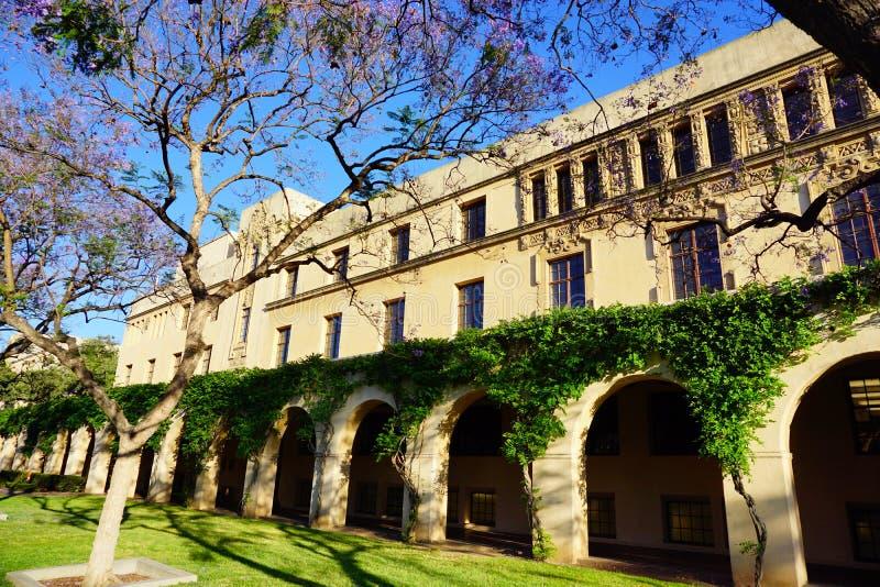 Der Campus von Caltech lizenzfreie stockfotos